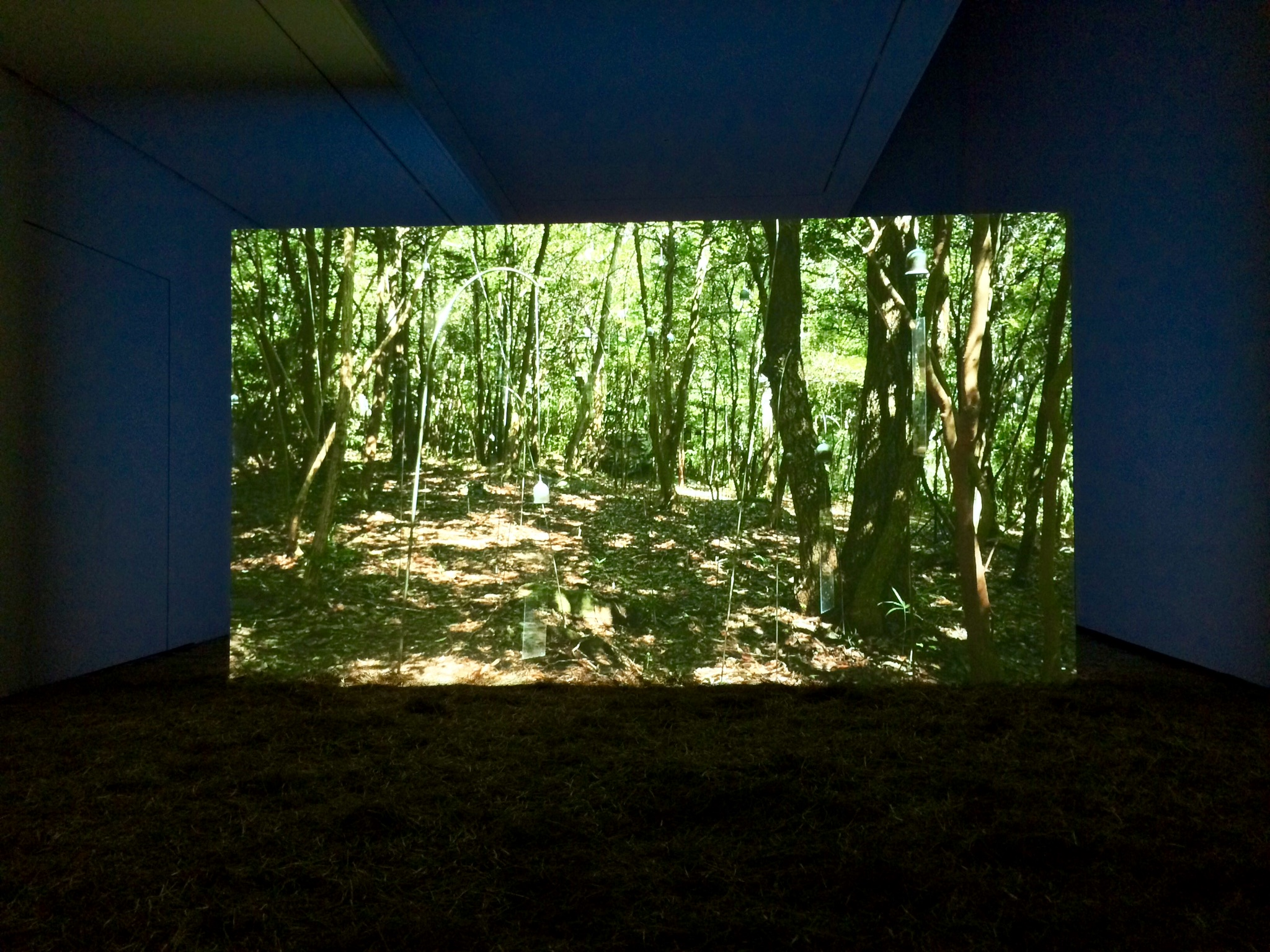 """Animitas"" (Small Souls), 2015. Video projection."