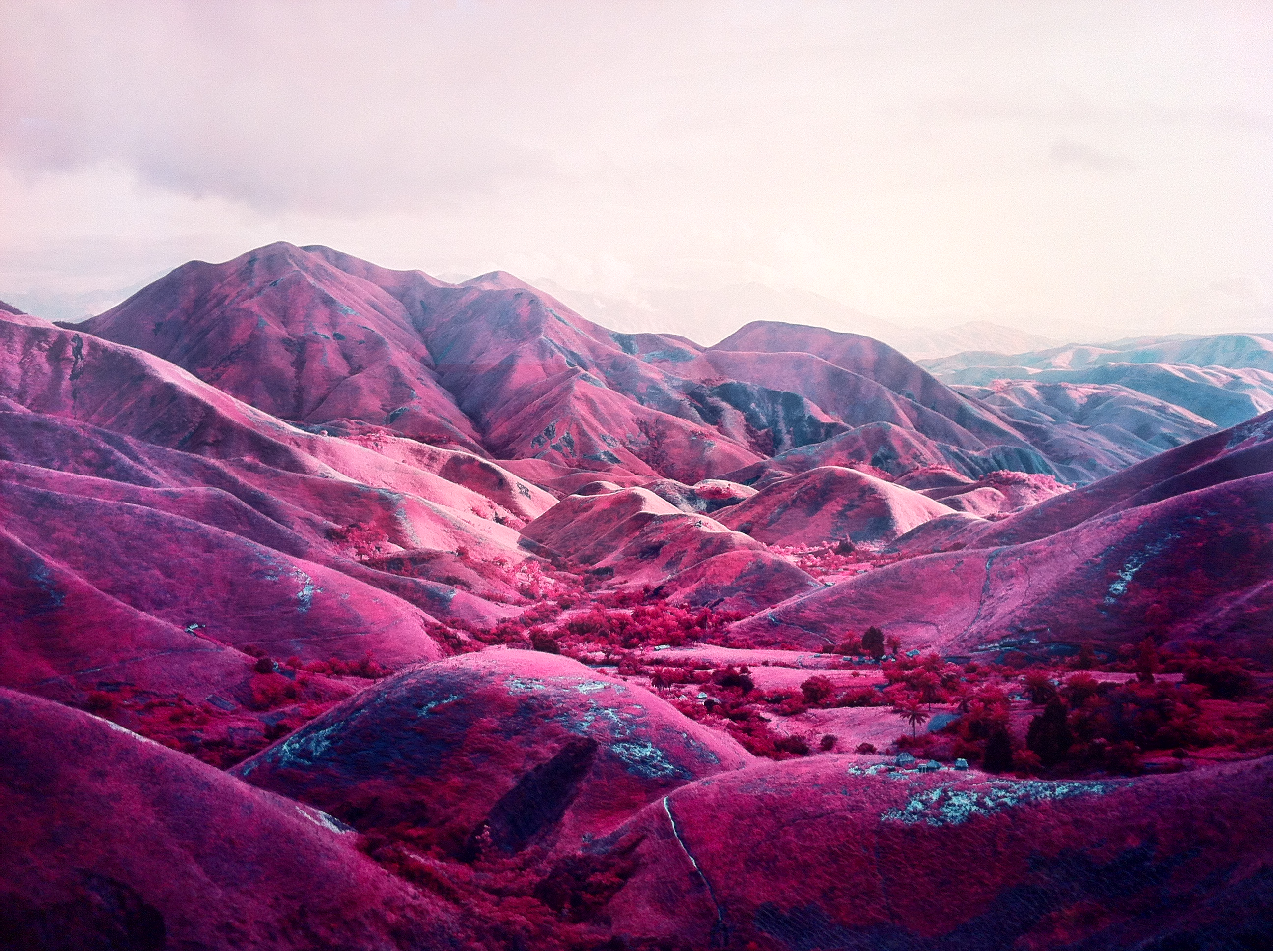 """Nowhere to Run"". Richard Mosse at The Photographers' Gallery, London."