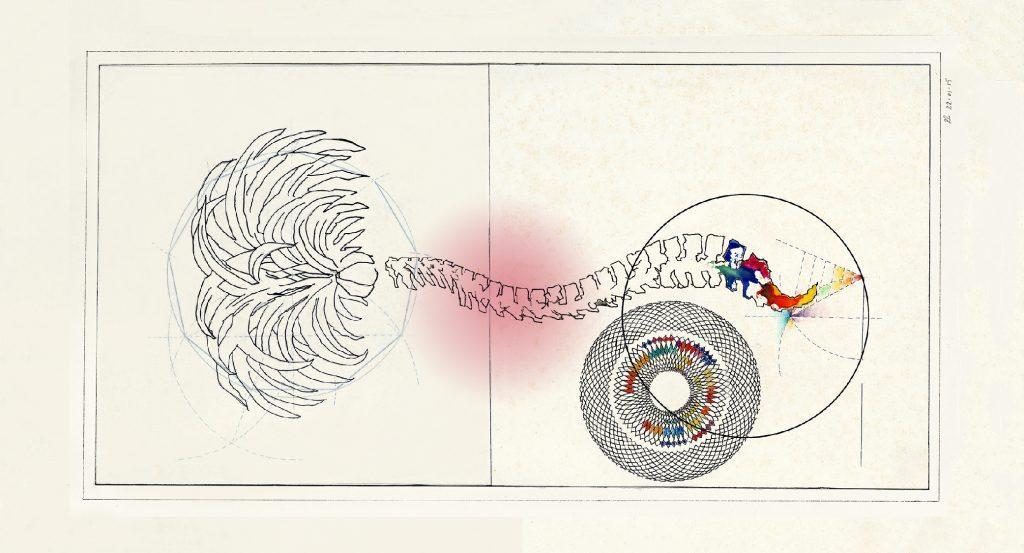 heartland Lab image by Elisa Antonietta Daniele